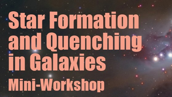 Star Formation and Quenching in Galaxies Mini-Workshop
